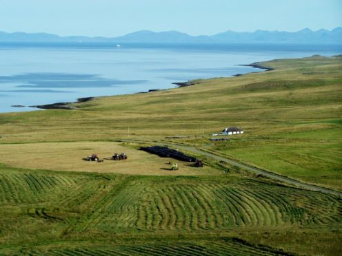 A report by the Auditor General has called for improvements at the Crofting Commission.