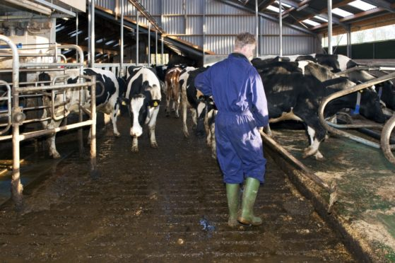 First Milk and Muller are increasing their farmgate milk prices on July 1.