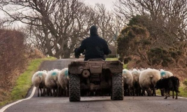 Tenant farmers have until May 24 to complete and return the survey.