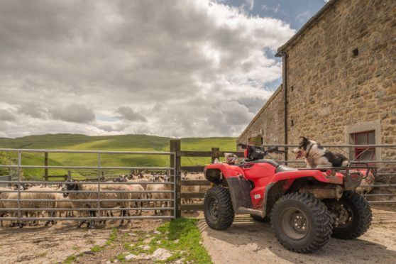 A red Suzuki 500 quad, like this one, was taken from near Lossiemouth