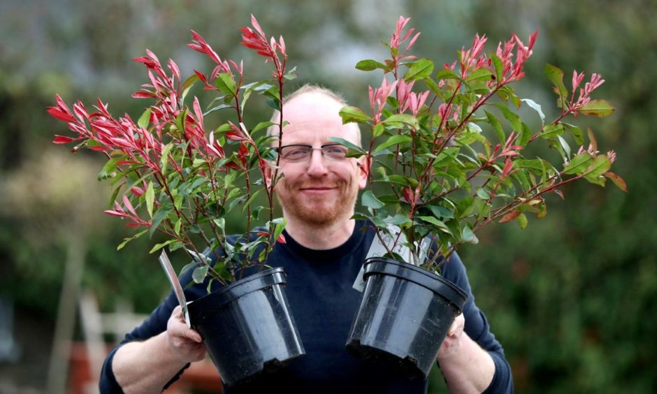 Garden Centres Dundee reopening