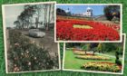 Aberdeens blooming success, clockwise from left, Anderson Drive in the 1970s, Union Terrace Gardens and Seaton Park.