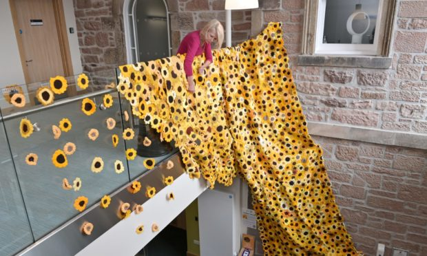 Sue McKelvie, facilities co-ordinator with The Highland Hospice in Inverness photographed with their Sunflower Cascade.