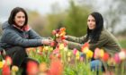 Kym McWilliam and Gayle Ritchie in the flower field near Laurencekirk.