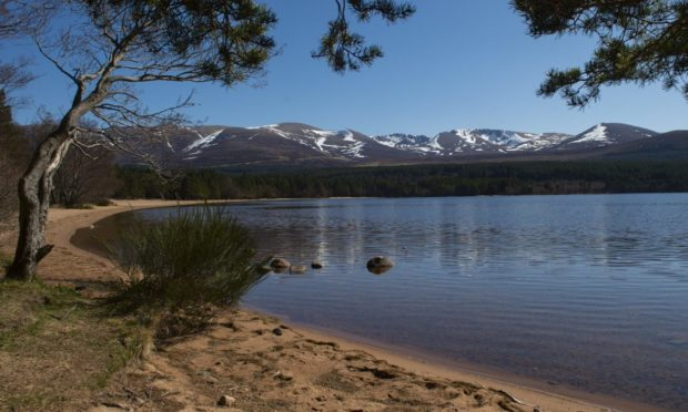 Loch Morlich, near Aviemore, is one of the areas attractions.