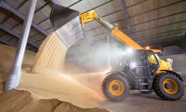 Savills hope to conclude a sale in time for the stores to be used for the 2021 harvest.