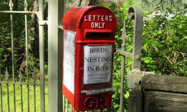 The postbox in Ardgay. Picture by Hugh Murray