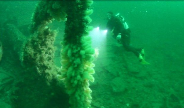 Divers have uncovered the wreckage of the SS Ruby, which sank in WWI. Supplied by Lost In Waters Deep