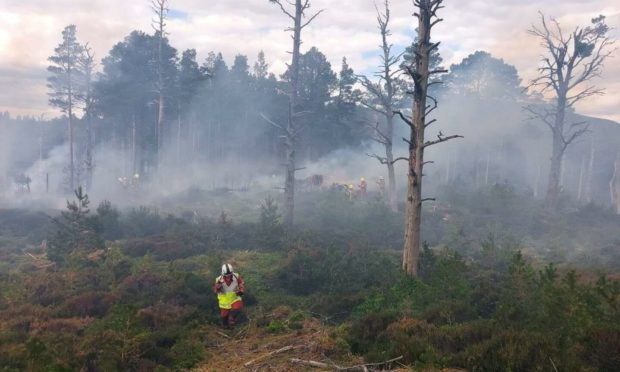 Wildfire damage in woodland near Loch Morlich, after a preventable fire raged out of control over June 5 and 6, 2021.   Photograph courtesy of SFRS Crew Commander Jamie Stewart.
