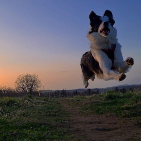 Is it a bird, is it a plane? No, it's Glenn, flying through the air at sunset. Thanks go to Garry Garrow, from Inverurie, for sending us this magnificent picture.