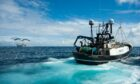 The Scottish fishing fleet may be facing more quota cut woes.