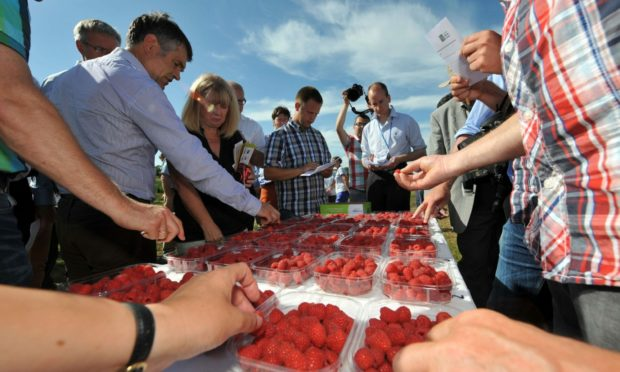 Fruit sampling is one of the attractions of Fruit for the Future.