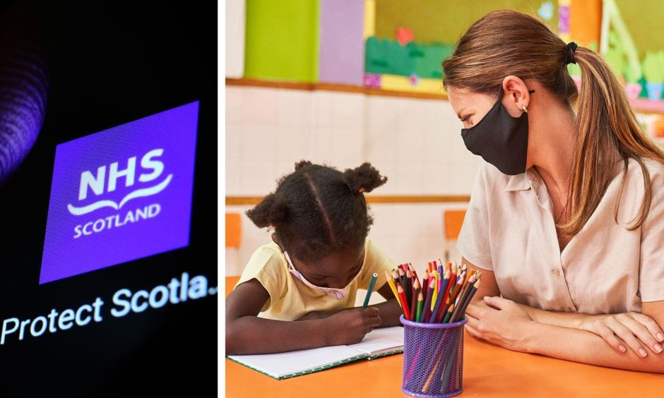 Claims: Nursery workers are key