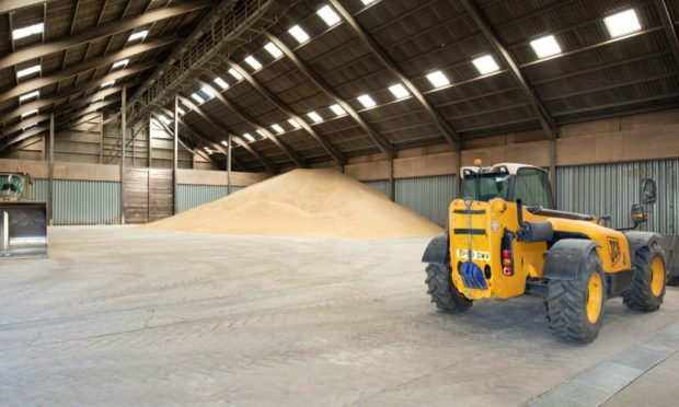 BARE: The grain stores contain significantly less grain than anticipated.