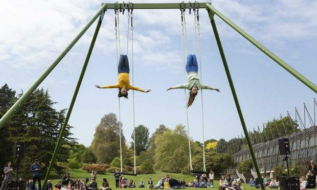 the swings
