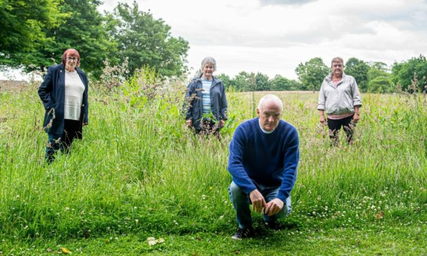 (Left to right) Cecilia Mather, Edna Kidd, Allan Lovie and Audrey Mitchell are outraged at the council halting grass cutting in the park behind their Raeden Place homes.