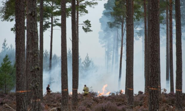 High risk of wildfires across eastern Scotland this weekend
