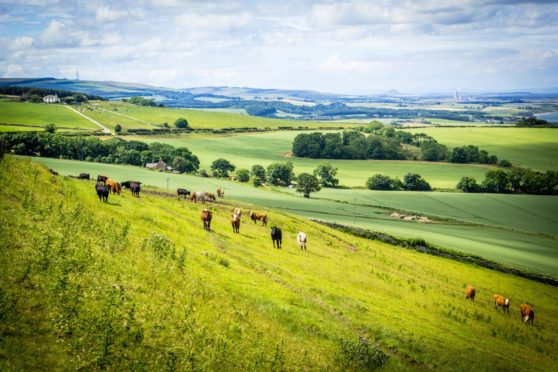The Farming For 1.5 Degrees inquiry published its recommendations earlier this week.