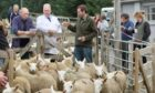 DRY: Lairg lamb sales were almost back to normal - but there was still no bar.