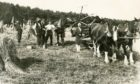 A horse-drawn 'binder' at harvest time in Aberdeenshire during the 1920s.