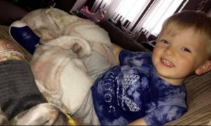 Two-year-old Iain Mackay died after a crash near Lybster last month.