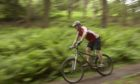 'Unauthorised' mountain bike trails can cause problems in woodlands.