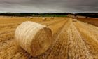 New farm policy needs to be tested to ensure it works for tenant farmers.