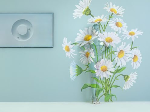 British model Daisy Lowe has been camouflaged into a wall of daisies for a photo shoot (Samsung)