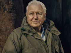 The Green Planet with Sir David Attenborough (Sam Barker/BBC)