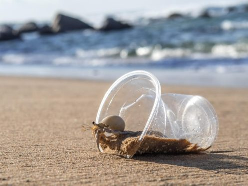 New research has shed new light around the impact of microplastic pollution on biodiversity (Queen's University/PA)