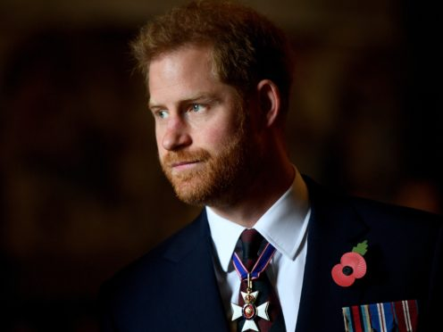 The Duke of Sussex paid tribute to the Guinea Pig Club (Victoria Jones/PA)
