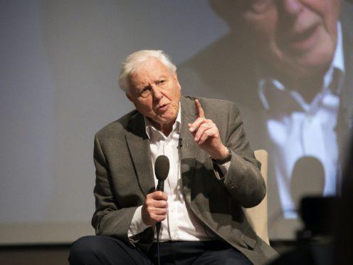 Sir David Attenborough (Fabio De Paola/PA)