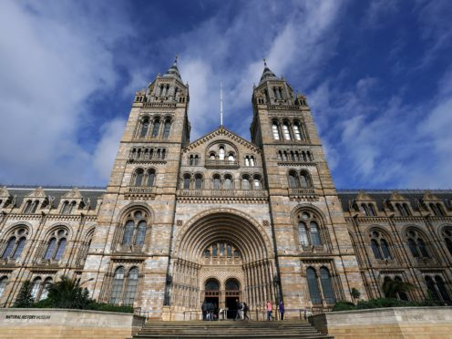 The Natural History Museum will reopen on August 5 (John Walton/PA)