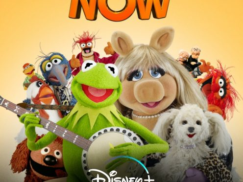 The Muppets (Disney)