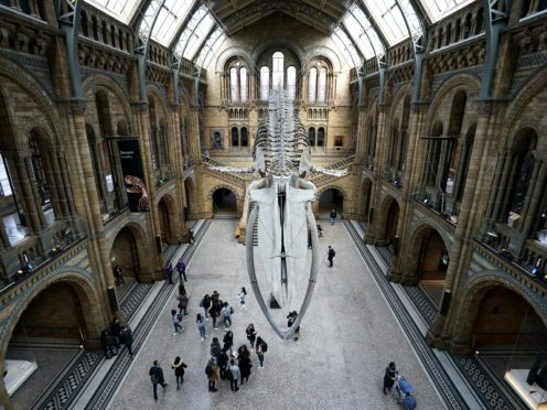 The National History Museum has reopened (John Walton/PA)