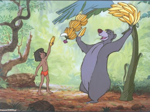 The Jungle Book (Disney/PA)