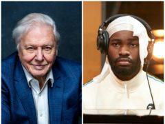 Sir David Attenborough and rapper Dave will unite for Planet Earth: A Celebration (BBC/PA)