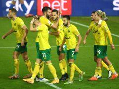 Mario Vrancic celebrates scoring the winner for Norwich against Birmingham (Joe Giddens/PA)