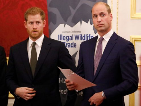 The Duke of Sussex and the Duke of Cambridge (PA)