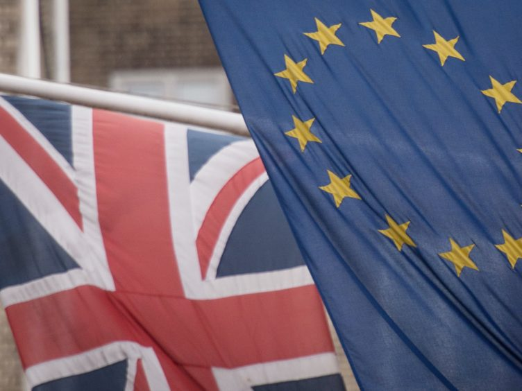 Talks on a post-Brexit trade deal with the EU will continue (Stefan Rousseau/PA)
