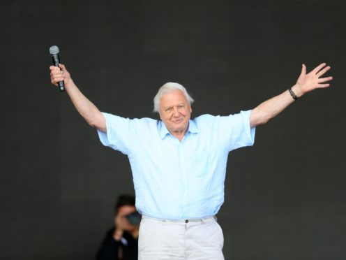 The Sir David Attenborough series had its first run in 2018 (Aaron Chown/PA)