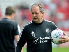 Fulham assistant manager Stuart Gray insists the club are moving in the right direction (Richard Sellers/PA)