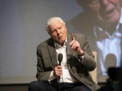 Sir David Attenborough has a message of hope for 2021 (Fabio De Paola/PA)