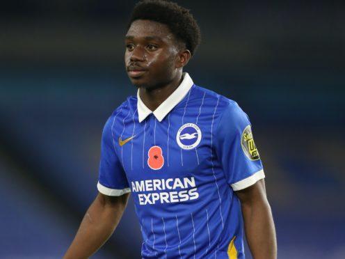 Brighton defender Tariq Lamptey sustained a knock against Fulham (Gareth Fuller/PA)