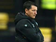 Manager Vladimir Ivic was pleased with Watford's display in the win over Rotherham (Steven Paston/PA)