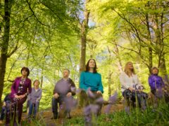 Shinrin-yoku, also known as forest bathing, is a popular Japanese concept (Ann Ward/PA)