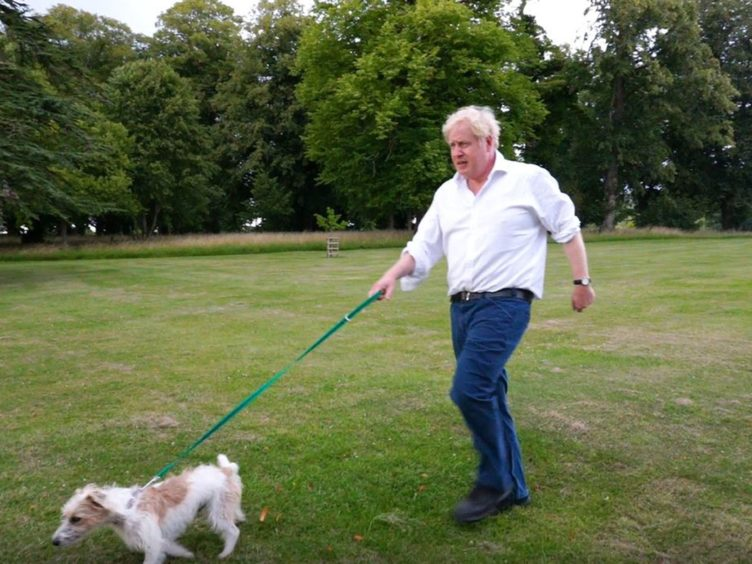 The Prime Minister with Dilyn the dog (Number 10 Downing Street)