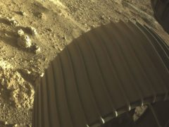 Nasa unveils video captured by Perseverance as it landed on Mars (NASA/JPL-Caltech)