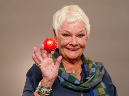 Dame Judi Dench is helping launch this year's Red Nose Day (Jacqui Black/Comic Relief/PA)