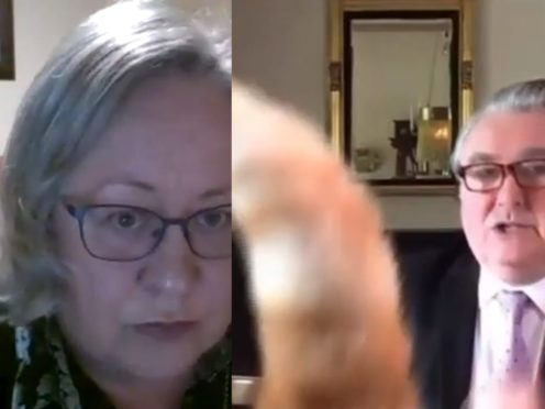 File screengrab taken from video of a Zoom meeting dated 10/12/20 showing parish clerk Jackie Weaver during a meeting of Handforth Parish Council, and SNP MP John Nicolson is interrupted by a cat (Handforth Parish Council and Parliamentlive.tv/PA)